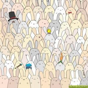 YOUTUBE Dudolf rompicapo Pasqua: trova uovo tra coniglietti
