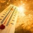 Meteo, ondata di caldo: al Sud fino a 35 gradi