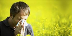 Allergia, sette cibi che dovete mangiare per combatterla