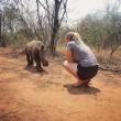 Baby rinoceronte dorme sulle gambe della veterinaria9