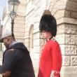 Buckingham Palace: schiaffo a guardia7