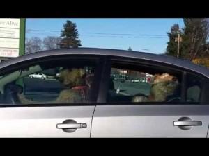 Guarda la versione ingrandita di YOUTUBE Cane suona clacson: è stufo di aspettare in auto