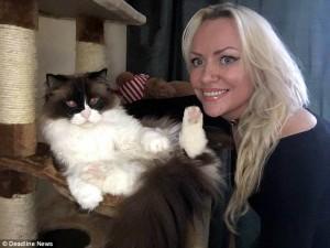 Guarda la versione ingrandita di  Crystal, la gatta che ama farsi la doccia calda  5