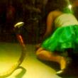 YOUTUBE Cobra show sul palco, ma stavolta morde e uccide 6