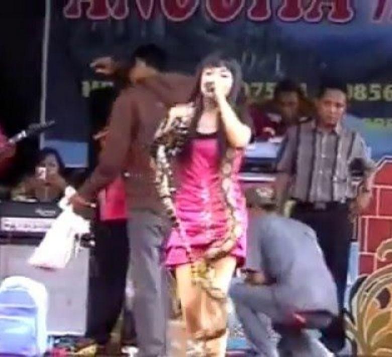 YOUTUBE Cobra show sul palco, ma stavolta morde e uccide 7