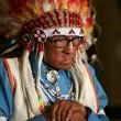 """Usa, morto a 102 anni l'ultimo indiano """"capo di guerra2"""