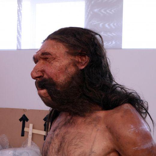 Uomo di Altamura, Neanderthal italiano: ecco com'era FOTO 2