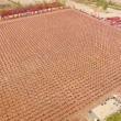Kung fu, enormi figure realizzate da 26mila allievi3