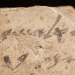 Bibbia, quando fu scritta? Nuova scoperta dice che...02