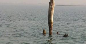 Venezia, naufragio in laguna: 3 uomini in mare tutta notte