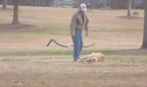 YOUTUBE Cane finge morte per non andare via dal parco