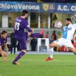 Chievo-Fiorentina 0-0: foto, highlights e pagelle_7