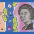 """Australia, nuova banconota da 5 $ non piace: """"E' disgustosa""""3"""