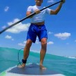 YOUTUBE Squalo butta giù il surfista e poi... 02