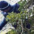 YOUTUBE Clandestini nei boschi stanati da telecamera nascosta04