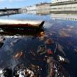 YOUTUBE Genova: petrolio in Pianego, Fegino, Polcevera FOTO4