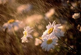 Meteo, ancora piogge al Centro Sud tra giovedì e venerdì