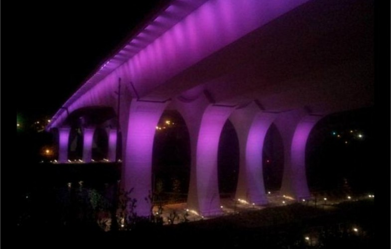Prince, migliaia di fan cantano insieme Purple Rain 111