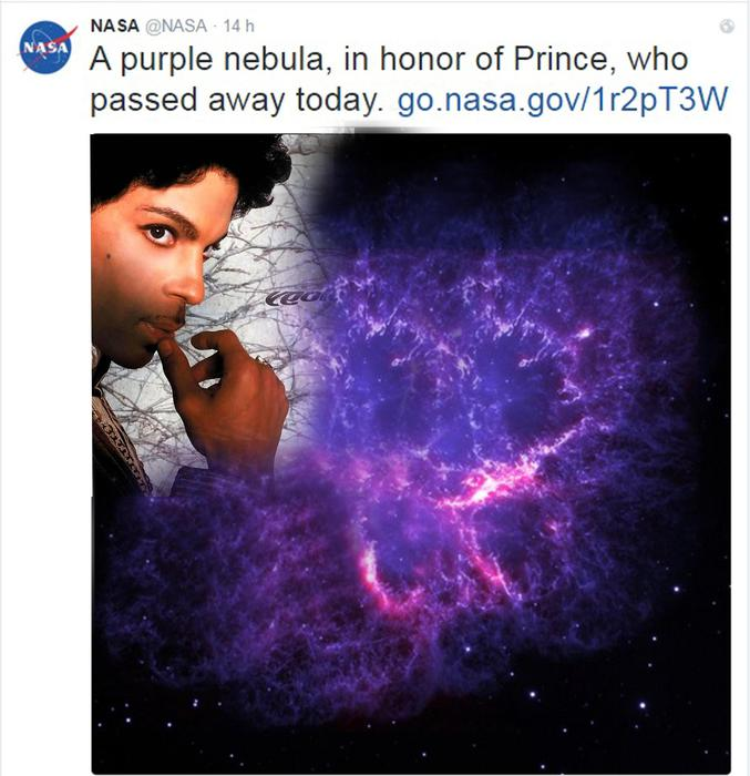 Prince, Bruce Springsteen suona Purple Rain