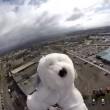 VIDEO YOUTUBE Sam, cane astronauta: lanciato 5 aprile ma... 2