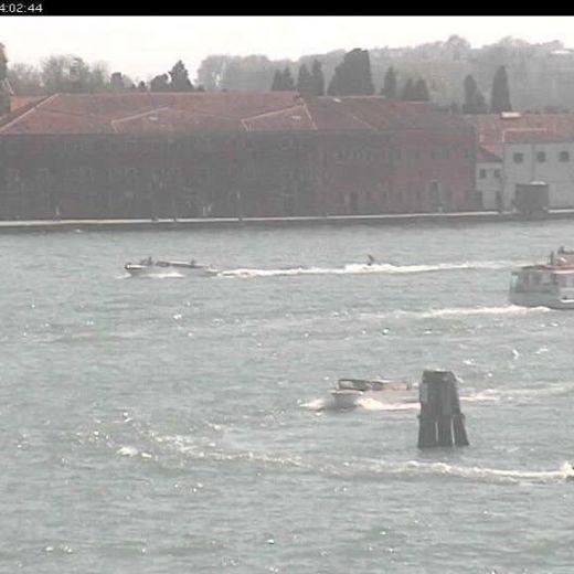 Venezia, sci nautico alla Giudecca: beccato tassista FOTO