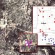 "YOUTUBE ""Ufo svastica"": misteriosa foto su Google maps6"