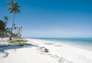 Guarda la versione ingrandita di Zanzibar, epidemia di colera: 45 morti. Cibo vietato se... (foto d'archivio Ansa)