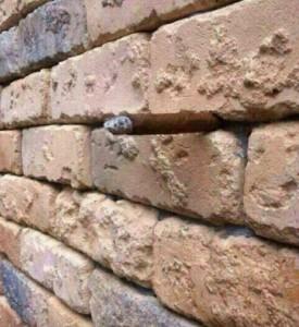 Illusione ottica, cosa si nasconde nel muro di mattoni