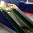 YOUTUBE Pulcini si divertono sullo scivolo