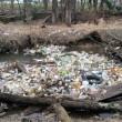 Cambogia, fiume ricoperto di rifiuti: VIDEO drone5