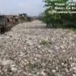 Cambogia, fiume ricoperto di rifiuti: VIDEO drone2