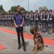 Cane poliziotto giura di essere fedele al padrone