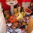 Casa piena di gatti e cani in decomposizione arrestata3