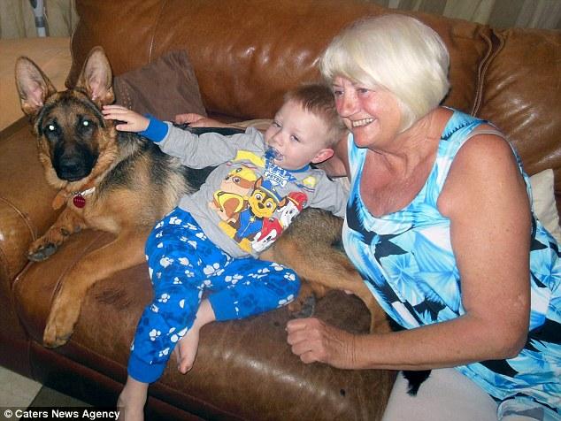 Cucciolo di cane si comporta come neonato6