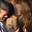 Orso da 635 chili coccola custode zoo 5