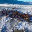 YOUTUBE Mongolia, vita da nomadi: la migrazione nella neve 2