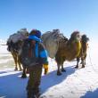 YOUTUBE Mongolia, vita da nomadi: la migrazione nella neve 5