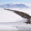 YOUTUBE Mongolia, vita da nomadi: la migrazione nella neve 10