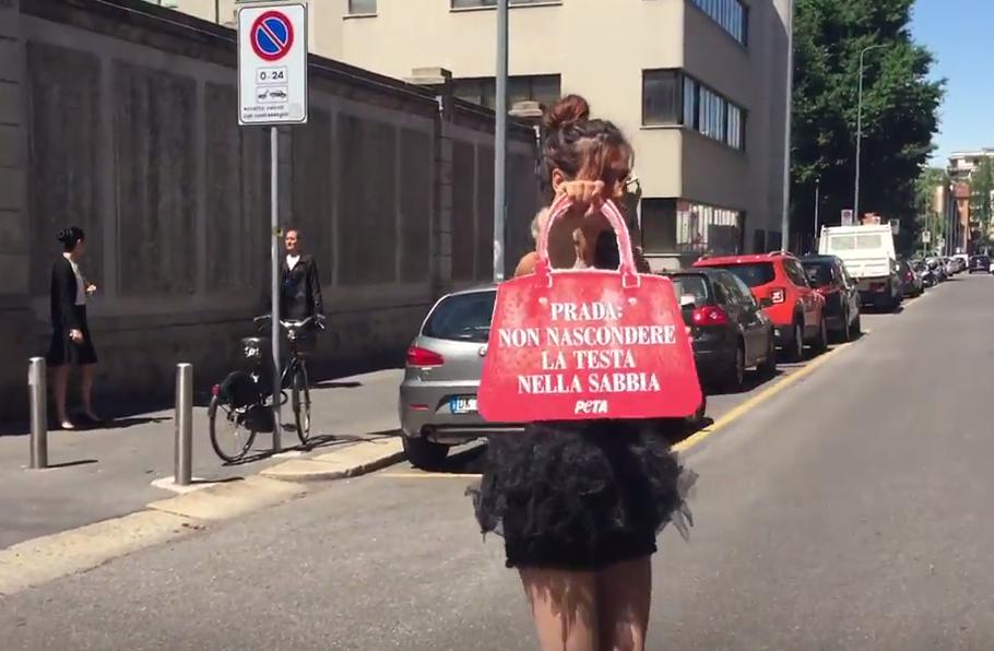 YOUTUBE Daniela Martani vs Prada: vestita con struzzo morto 3