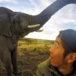 Selfie con elefante e l'animale2
