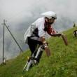 Vive un anno con le capre sulle Alpi svizzere3
