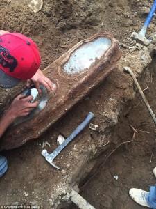 Guarda la versione ingrandita di San Francisco, bimba sepolta 145 anni fa intatta nella bara