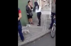 VIDEO YOUTUBE Prova a derubare una donna. Lei reagisce e…