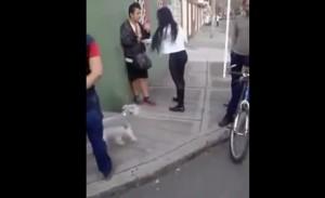 VIDEO YOUTUBE Prova a derubare una donna. Lei reagisce e...