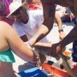 Donna esce dall'acqua con squalo appeso al braccio 7