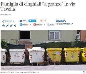 Genova, famiglia di cinghiali invade città a caccia di cibo