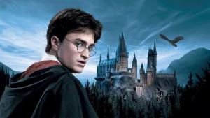 """""""Harry Potter fa male a cervello bambini"""": crociata preside"""