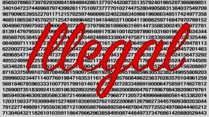 Numero illegale che non puoi scrivere su Internet