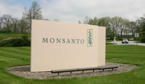 Bayer, Monsanto rifiuta la offerta da 62 miliardi di dollari