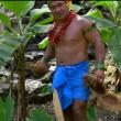 VIDEO Aprire una noce di cocco coi denti? Ecco il tutorial 3